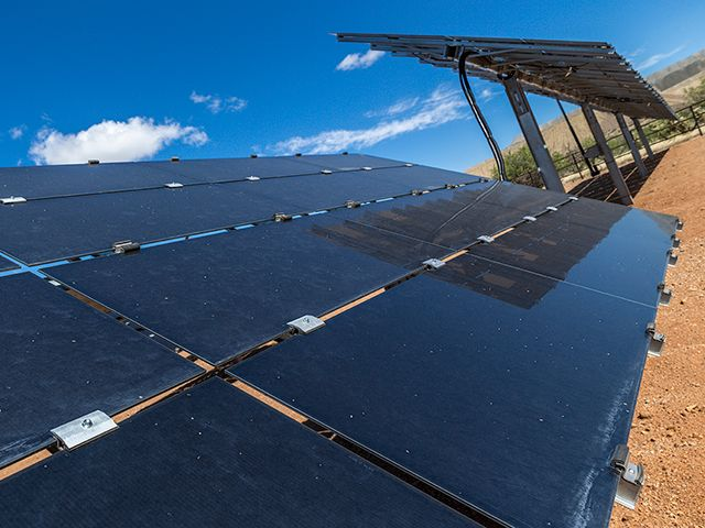 Cat Microgrid Solar Panels in the Desert
